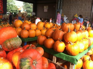 Pumpkins at the Farmers' Market (photo by Jaimie Newsome, 9/2014)