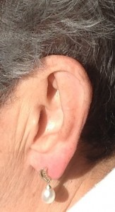 The ear - our listening tool. Photo by M.Yanez